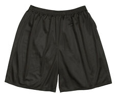 Men's Athletic Mesh Shorts -11 Assorted Colors