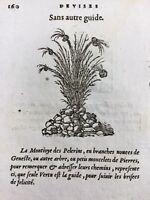 Rare Gravure sur Bois de 1557 Montjoie des pèlerins Genêt Flèche Randonnée Arc