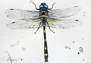 """Dragonfly New watercolor original 5""""x7"""" insect art by Anne Gorywine"""