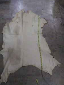 Deer leather Deerskin hide Vegetable Tanned Very Soft Vanilla 9 Sq.ft.  3 oz
