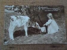 Early 1911 Postcard Child Humour feeding a calf Young Girl Caption Real Photo
