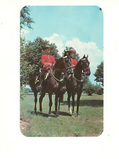 TWO MEMBERS OF THE ROYAL CANADIAN MOUNTED POLICE RCMP CHROME POSTCARD