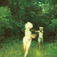 The World Is a Beautiful Place & I Am No Longer Afraid to Die HARMLESSNESS CD