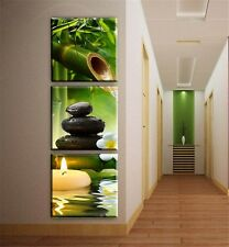 [Unframed] Green Bamboo Nature Spa Wall Art Picture Prints Canvas Home Decor New