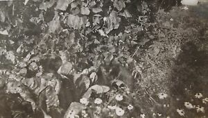 ANTIQUE VINTAGE HIDDEN KITTY CAT WHERE'S WALDO BLACK MAGIC GOOD BAD LUCK PHOTO