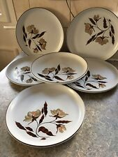 Set of Six 6  Denby Dinner Plates Windflower Brown Floral Leaf Design 26cm