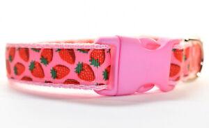 Strawberry Summer Adjustable Pink dog puppy collar girl small medium