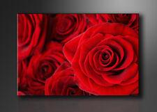 Visario Bild auf Leinwand Markenware Rose Rot 120x80cm XXL 5058>