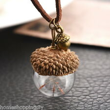 SP 1PC Acorn Shell Dandelion Glass Pendant Necklace For Women Jewelry 42cm