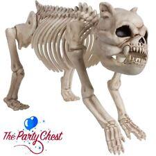 BONEYARD DOG SKELETON HALLOWEEN PARTY DECORATION Horror Animal Pet Prop 670567