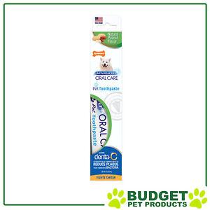 Nylabone Advanced Oral Care Natural Peanut Flavour Toothpaste Dog 70gm
