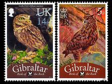 Gibraltar 2013  FRANKEER UILEN OWLS EULEN  herdruk/REPRINT OPT  postfris/mnh