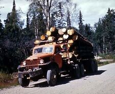 """1940's Logging Truck on old sawmill road 8""""x 10"""" Photo 44"""