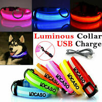 USB Rechargeable LED Pet Dog Collar Flashing Luminous Safety Night Light Up UK