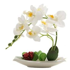 Phaleanopsis Orchid Silk Flower Arrangement with White Vase Decorative White