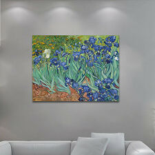 Large Canvas Print Irise Van Gogh Painting Reproduction Home Dec Wall Art Framed