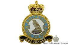 Queens Crown: Royal Air Force 120 Squadron Unit RAF Lapel Badge