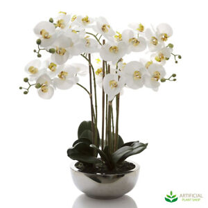 Artificial Fake Plants Phal Orchid in Silver Pot - Real Touch 65cm