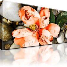 Blumen Bild auf Leinwand. Natur. Mit Keilrahmen! XL