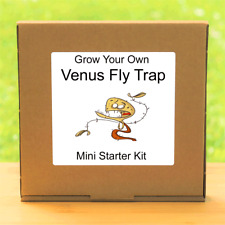 Grow Your Own Carnivorous Venus Fly Trap Plant Kit - Windowsill Gardening Gift