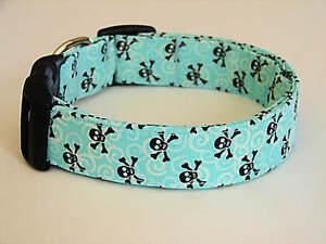 Charming Aqua W/ Brown Skulls Dog Collar
