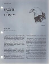 EAGLES & OSPREY Wildlife Notes 1 75-32 PA Game Commission 4-pages illustrated
