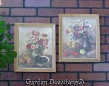 Set of 2 VINTAGE FLORAL ASTER / COSMOS & FRUIT GRAPE APRICOT PICTURES 10 x 12