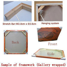 """Gallery wrapped Stretcher bar Framework for oil painting and canvas print 30x30"""""""