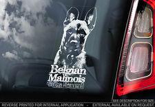 Belgian Malinois - Car Window Sticker - Dog Sign -V09