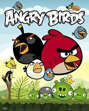Angry Birds : Group - Mini Poster 40cm x 50cm new and sealed