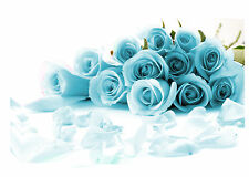 "DUCK EGG BLUE ROSES CANVAS PICTURE WALL ART PRINT A2 20"" x 14"""