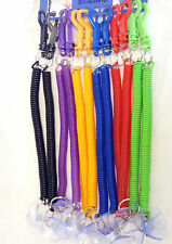 Colorful Spiral Keyring Key Chain Stretchable String Key Clip suction Holder