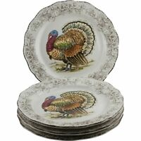 Maxcera Turkey Thanksgiving Fall Salad Plates Set of 4