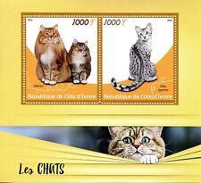 Côte d'ivoire 2016 neuf sans charnière chats sibériens egyptian mau 2v m/s pets dom animaux timbres