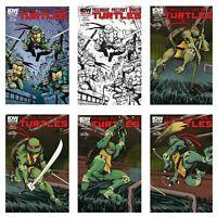 Teenage Mutant Ninja Turtles - Mexican Edition Variants - Lot of 6 - Mexico