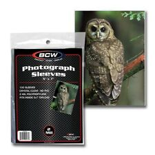 Photo Sleeves 5x7 Pack of 100 2 Mil Acid Free Archival Poly Postcard Print BCW