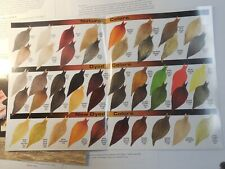 2 Color 2003 Whiting Dry Fly Hackle Catalogs & Paper Work Tom Whiting Signature