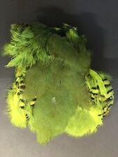 Chukar, French partridge skin, dyed. Fly tying, fly tying skins