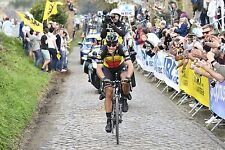 PHILIPPE GILBERT TEAM QUICK STEP TOUR OF FLANDERS 2017 POSTER