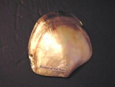 """4 to 5"""" POLISHED MOTHER OF PEARL BLACK LIP OYSTER SEA SHELLS BEACH DECOR"""
