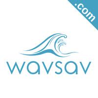 WAVSAV.com 6 Letter Short .Com Catchy Brandable Premium Domain Name for Sale