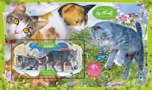 Domestic cats gatos Katzen 2020 s/s MNH #VG2828