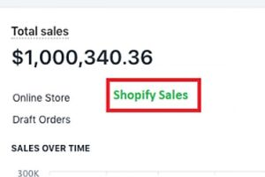 I WILL BUILD & MANAGE YOUR 7 FIGURE SHOPIFY DROPSHIPPING WEBSITE BUSINESS