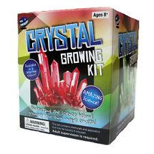 Crystal Growing Science Kits Primary Teacher Resource Kids Birthday Gift Amazing