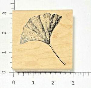 Gingko Rubber Stamp by Inkadinkado NEW Tin Can Mail 94742 Leaf Plant Ginkgo