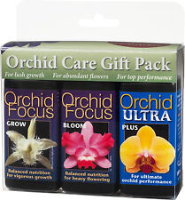 Orchid Focus Gift Pack - GROW BLOOM ULTRA - Nutrients for Orchids. 3 x 100ml