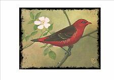 Placa de pared Vintage Tigre Finch jaula pájaro imagen Sluis aviario signo