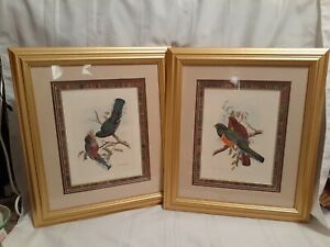 """Pair of Gold Framed Wall Art Pictures, Bird Home Decor 23"""""""