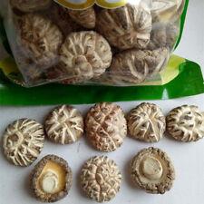 Flower Dried Shiitake Mushrooms Xmas Soup Food Ingredients Organic Food 500g