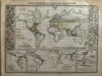 1852 WORLD PLANTS & CROPS CHART HAND COLOURED ANTIQUE MAP BY JOSEPH MEYER